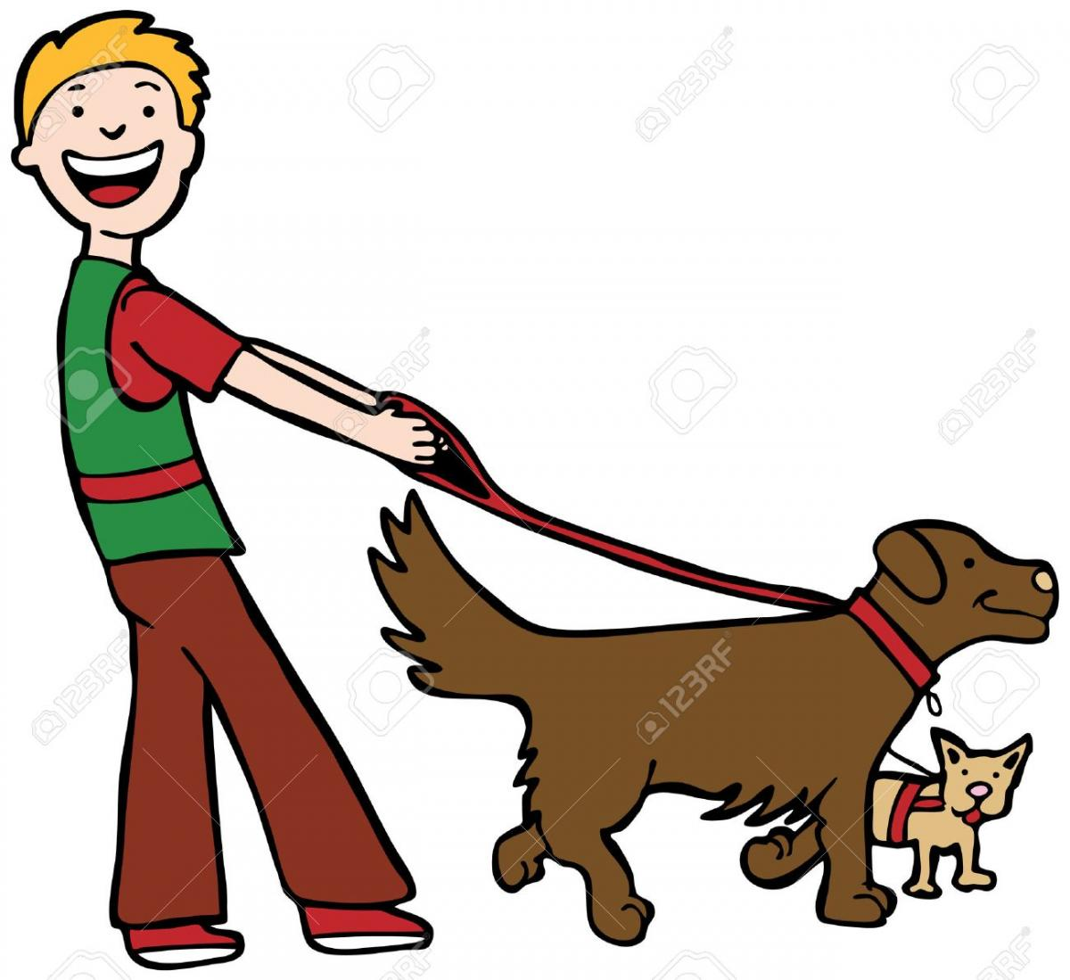 dog-walker-man-walking-two-dogs-.jpg